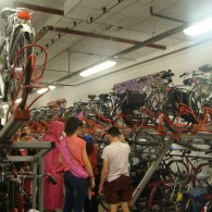 Travel Summer University Tilburg & Maastricht: Burgundian Bicycles