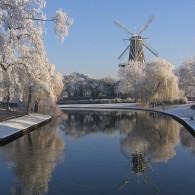 Enjoy the Dutch wintertime