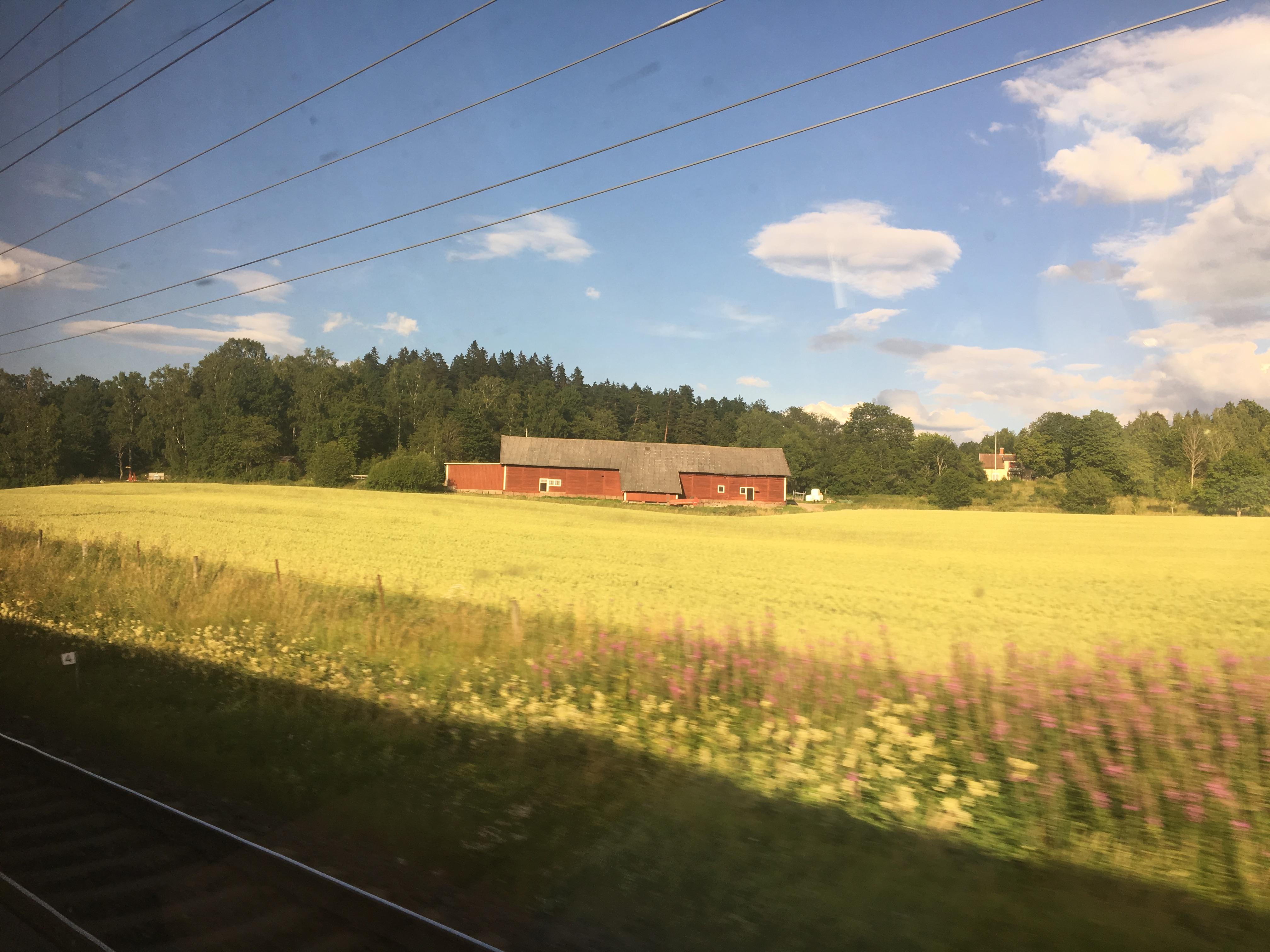Testing German Railways: Domen's Interrail Experience