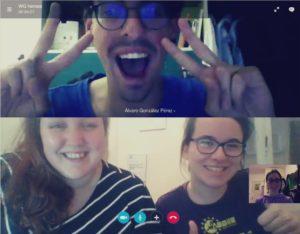 WG Coordinators Skype
